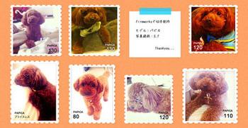 pet_work.jpg